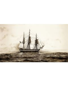 USS Constitution's Historic Sail Off Marblehead 11''x 14'' Print (Matted)