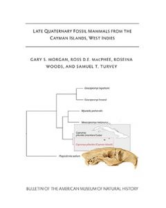 B428 (2019) Late Quaternary Fossil Mammals From The Cayman islands