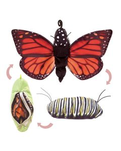 Monarch Butterfly Life Cycle Puppet