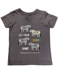 Toddler Let Your Colors Shine T-Shirt