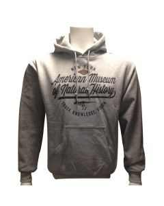Adult Grey Truth, Knowledge, Vision Hoodie