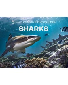 American Museum of Natural History Sharks Board Book