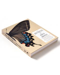 The Butterflies of North America Titian Peale's Lost Manuscript