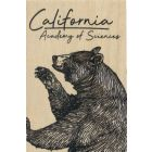 California Grizzly Bear Wood Magnet