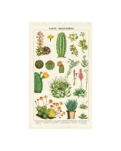 Cacti Succulents Tea Towel